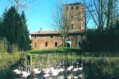 Oasi di Sant'Alessio - Castello